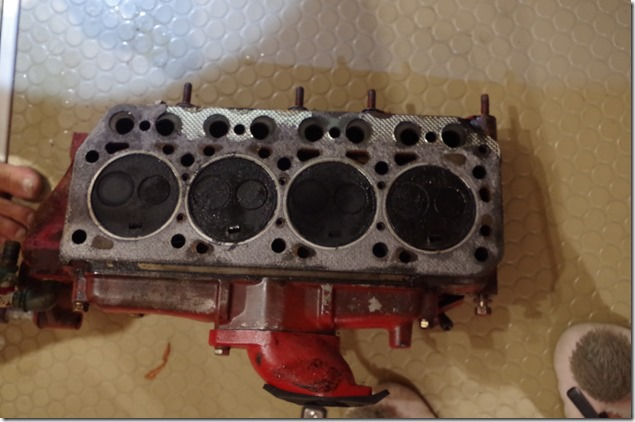IMGP5055